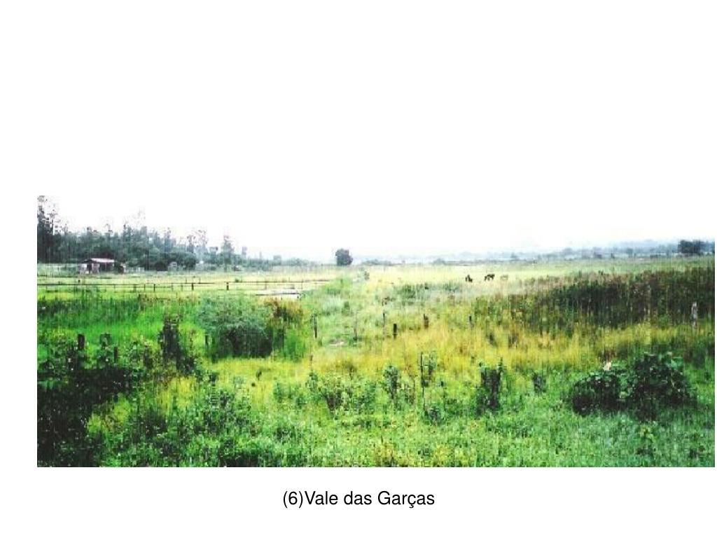 (6)Vale das Garças