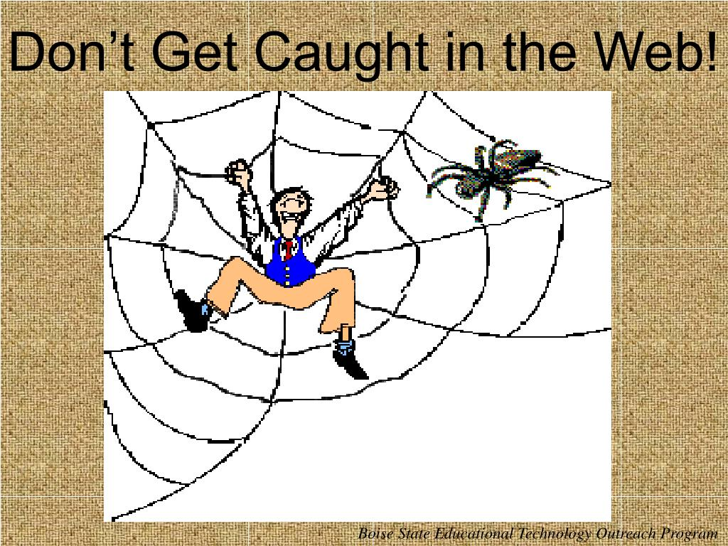 Don't Get Caught in the Web!
