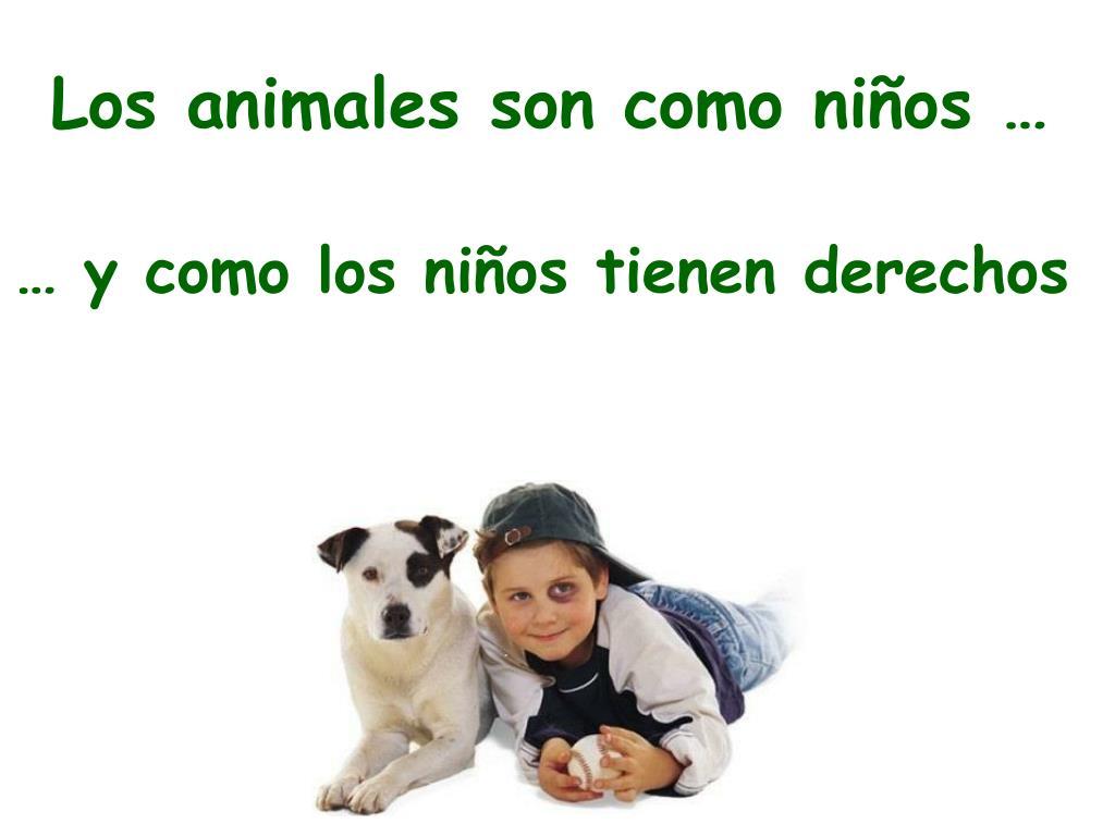 Los animales son como niños …