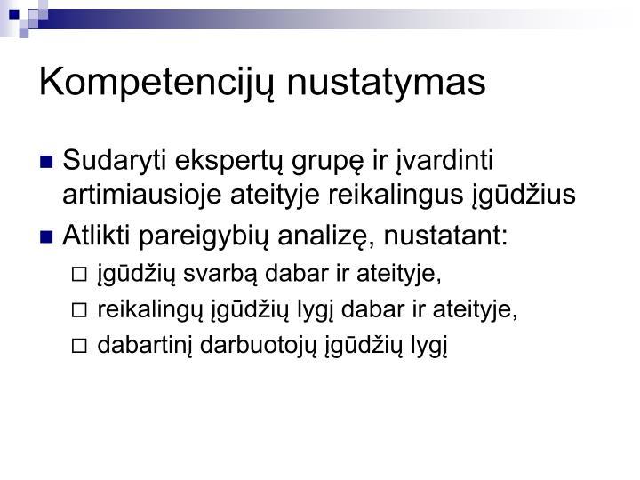 Kompetencijų nustatymas