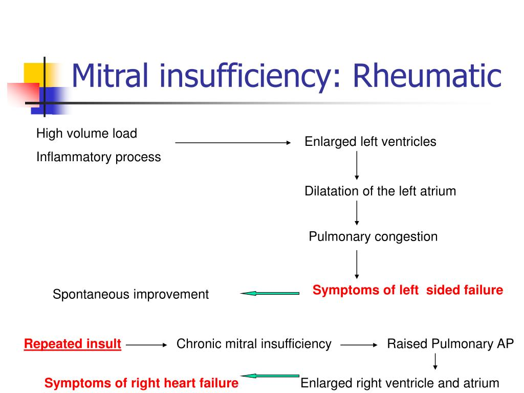 Mitral insufficiency: Rheumatic