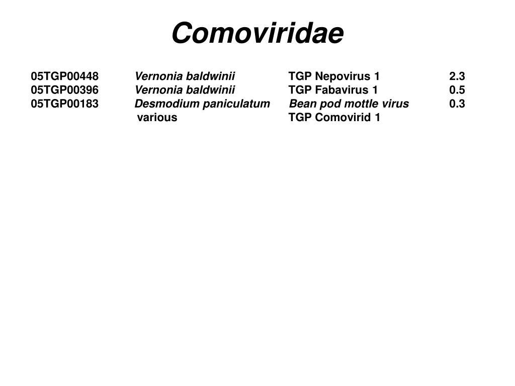 Comoviridae