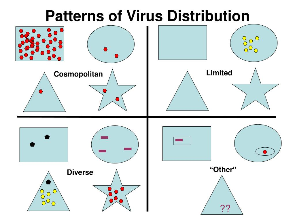 Patterns of Virus Distribution