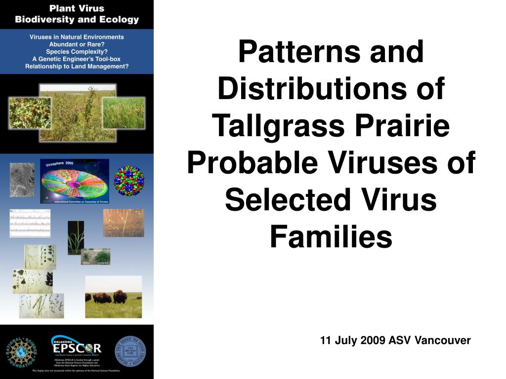 Patterns and Distributions of Tallgrass Prairie Probable Viruses of Selected Virus Families