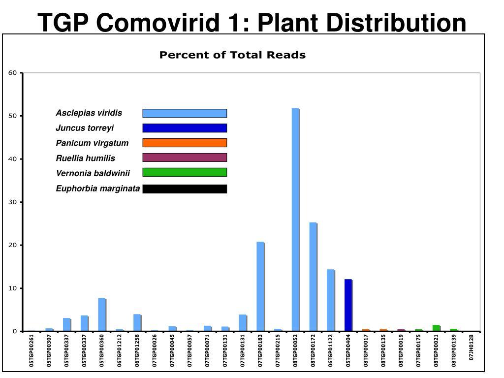 TGP Comovirid 1: Plant Distribution