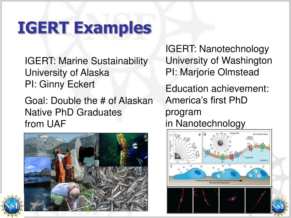 IGERT Examples