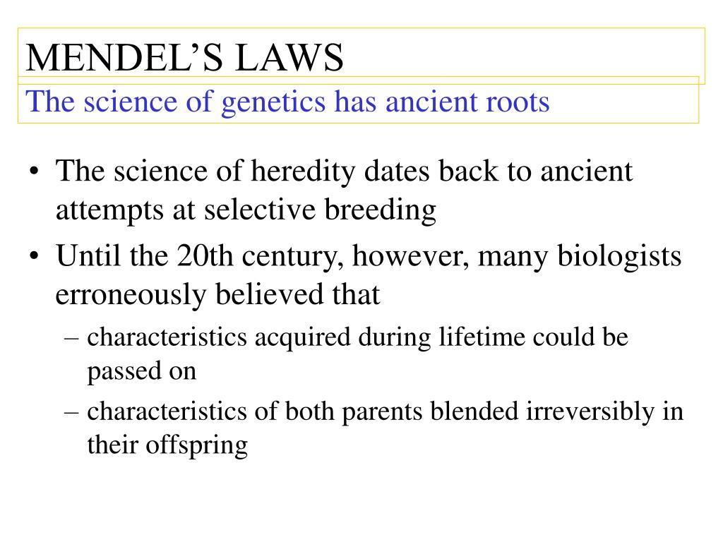 mendelian genetics scientific paper 2015-3-10  after 150 years, mendelian genetics still unchallenged by biology  which are the basis of mendelian genetics  the paper summarizing mendel's many years of.