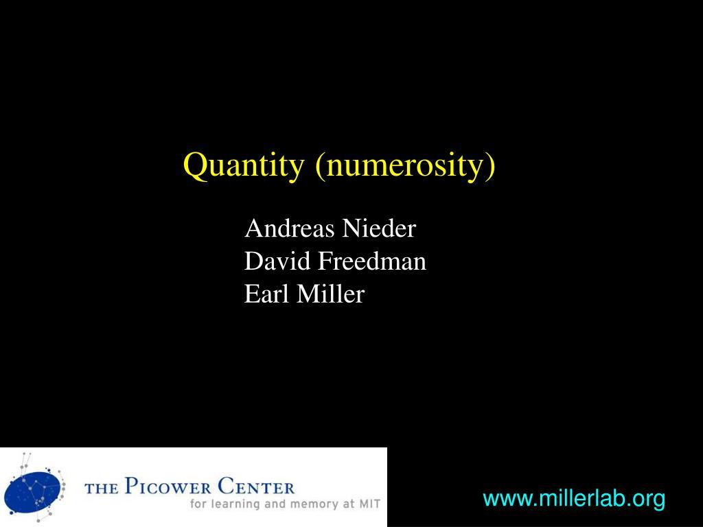 Quantity (numerosity)
