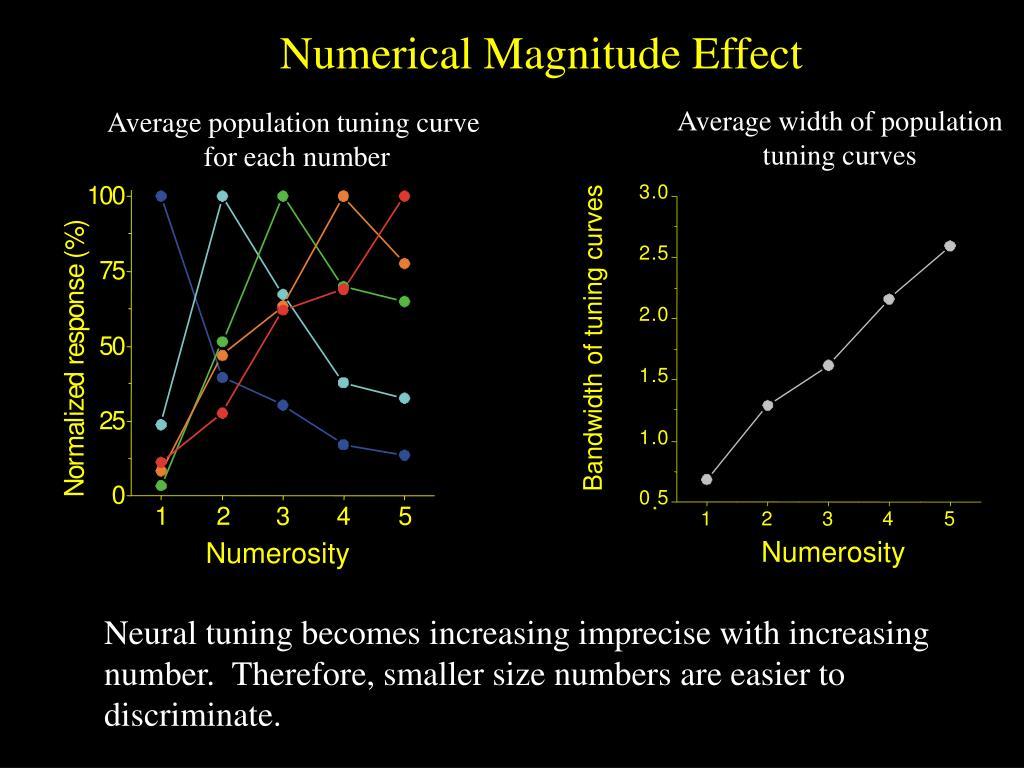 Numerical Magnitude Effect