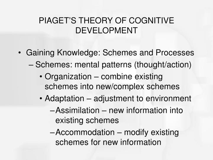 Piaget s theory of cognitive development3