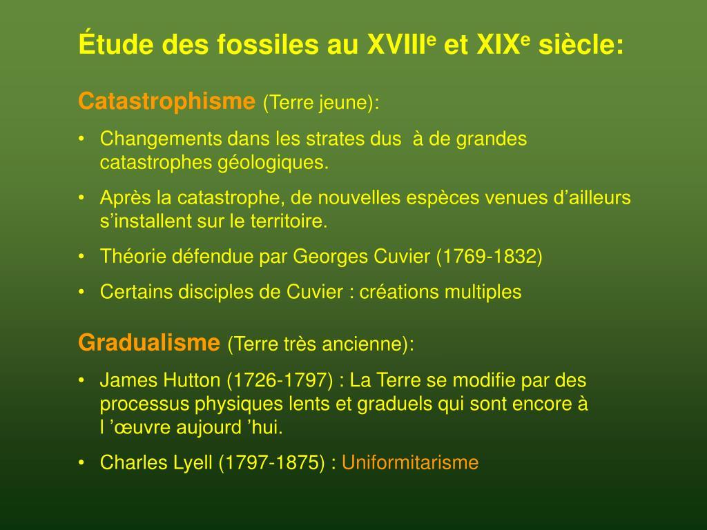 Étude des fossiles au XVIII