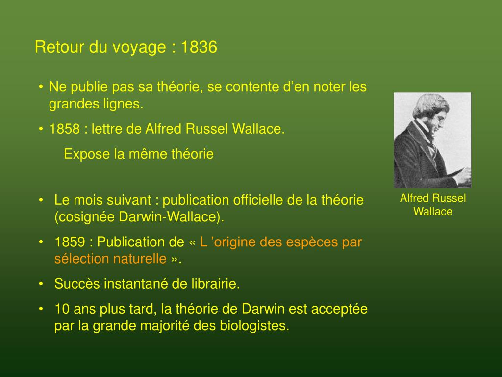 Alfred Russel