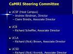 camri steering committee