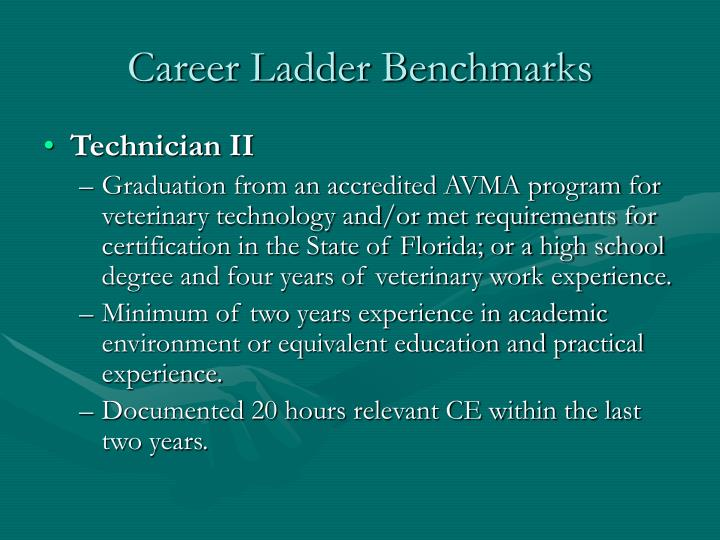 Career ladder benchmarks l.jpg