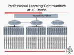 professional learning communities at all levels
