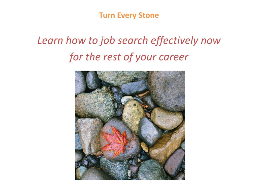Turn Every Stone
