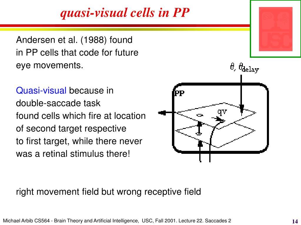 quasi-visual cells in PP