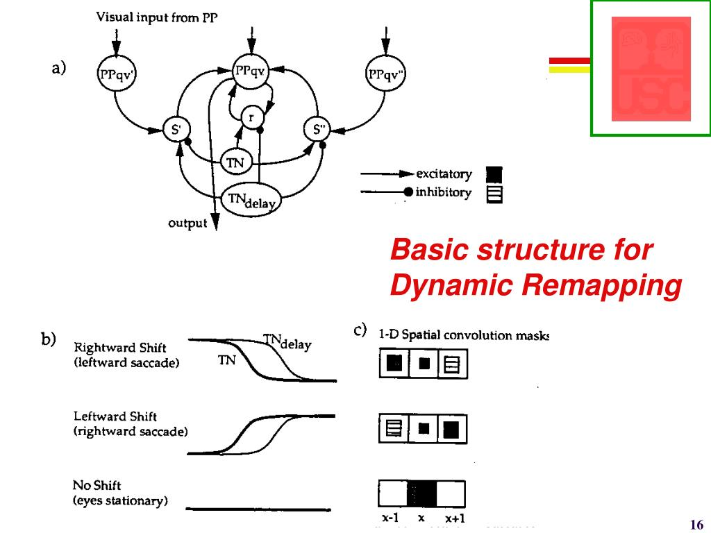 Basic structure for