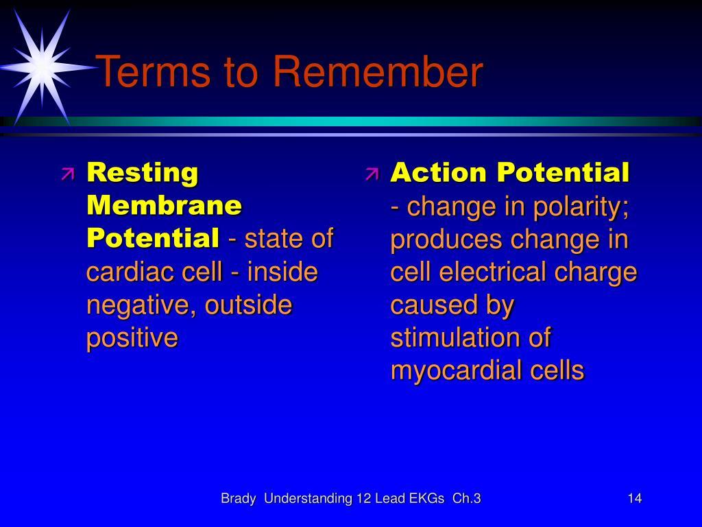 Resting Membrane