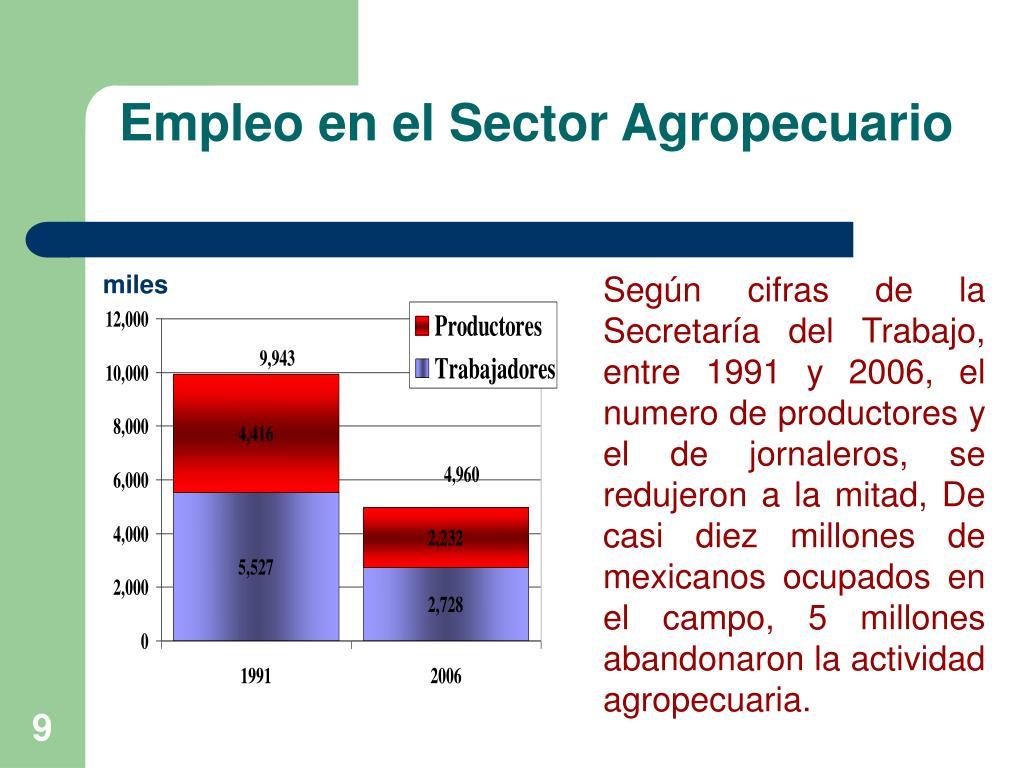 Empleo en el Sector Agropecuario