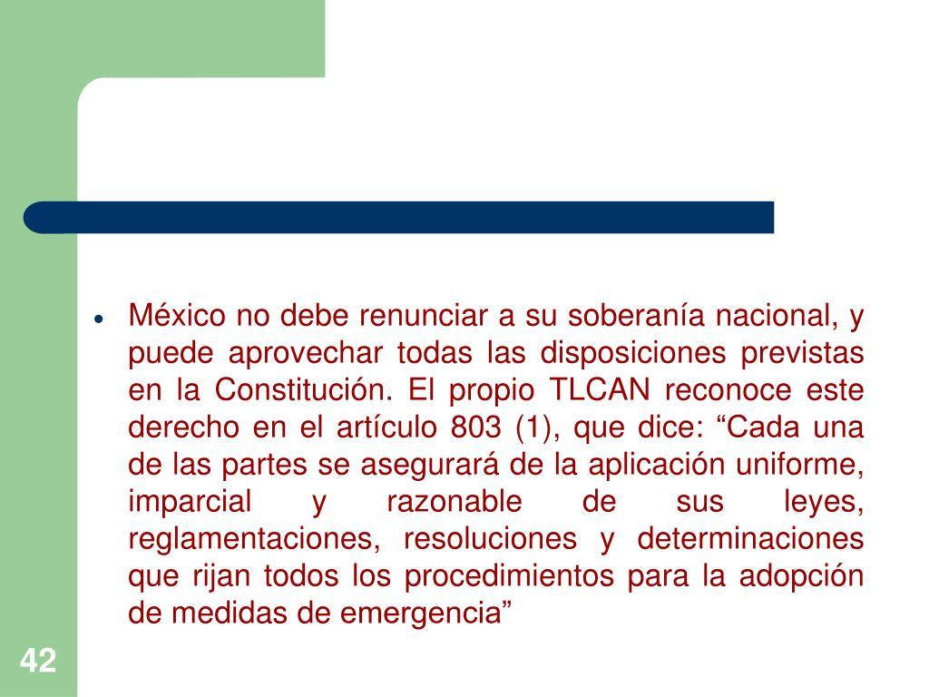 """México no debe renunciar a su soberanía nacional, y puede aprovechar todas las disposiciones previstas en la Constitución. El propio TLCAN reconoce este derecho en el artículo 803 (1), que dice: """"Cada una de las partes se asegurará de la aplicación uniforme, imparcial y razonable de sus leyes, reglamentaciones, resoluciones y determinaciones que rijan todos los procedimientos para la adopción de medidas de emergencia"""""""