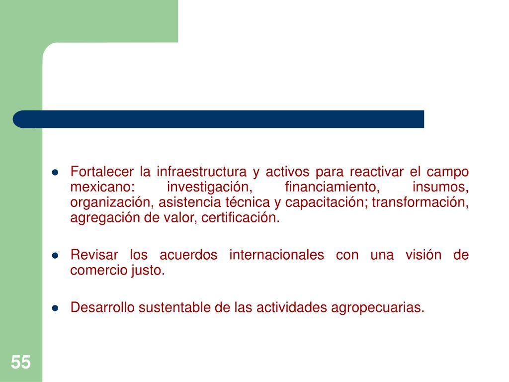 Fortalecer la infraestructura y activos para reactivar el campo mexicano: investigación, financiamiento, insumos, organización, asistencia técnica y capacitación; transformación, agregación de valor, certificación.