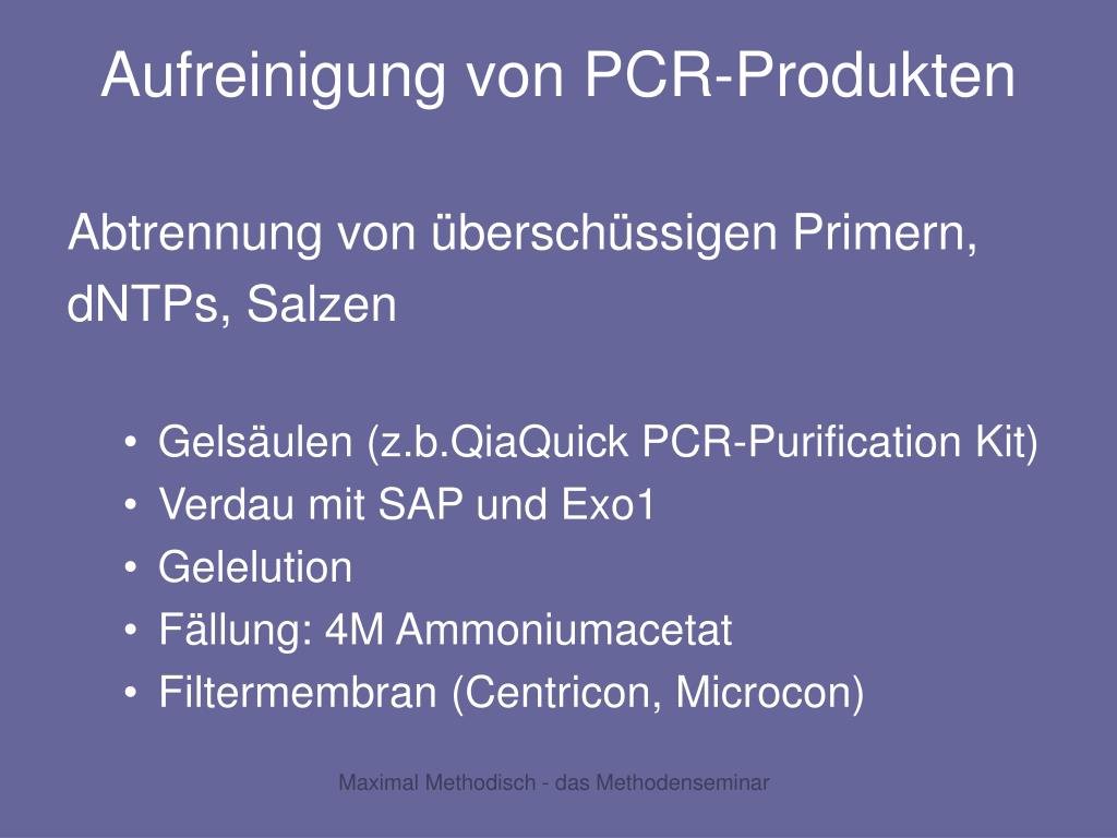 Aufreinigung von PCR-Produkten