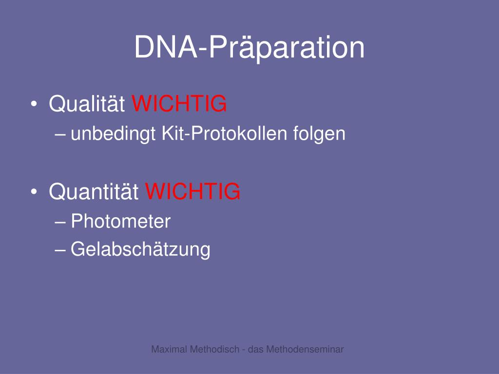 DNA-Präparation
