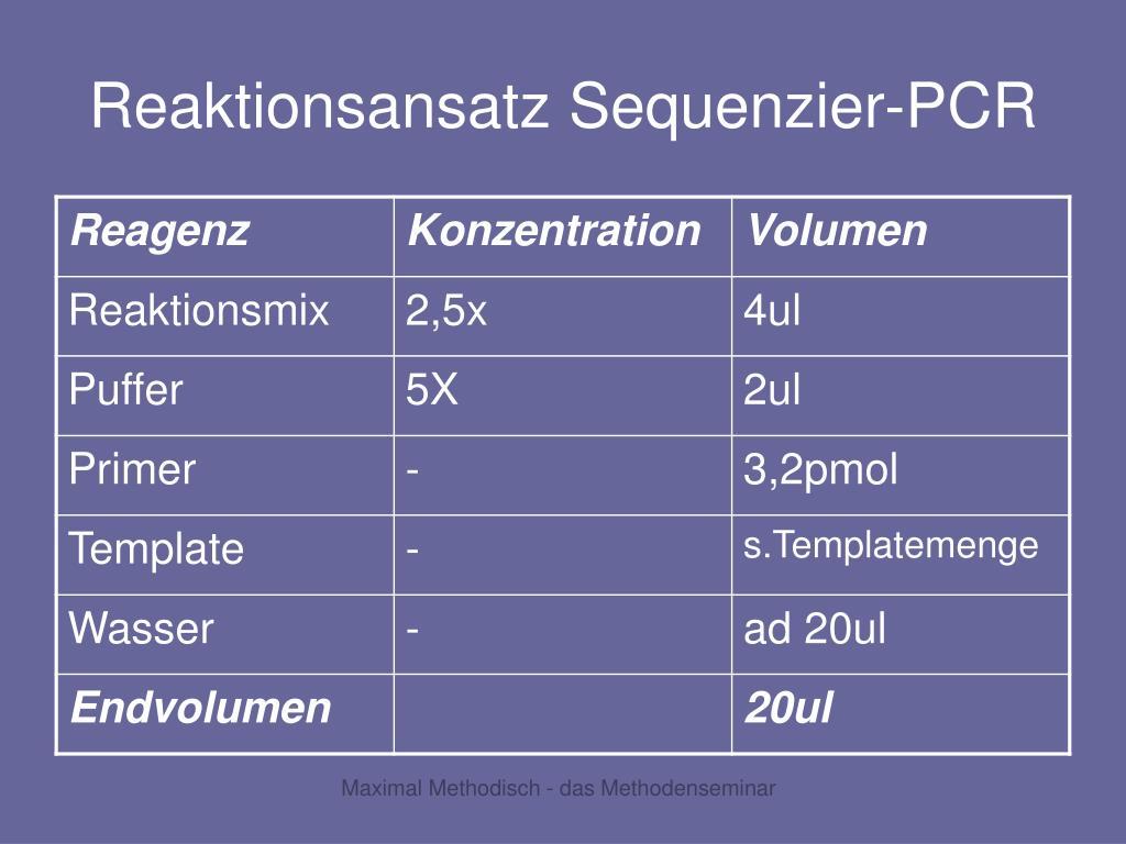 Reaktionsansatz Sequenzier-PCR