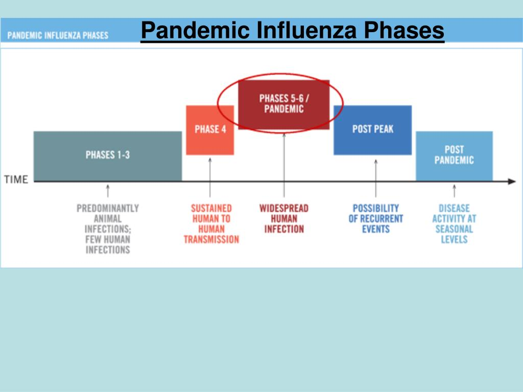 Pandemic Influenza Phases
