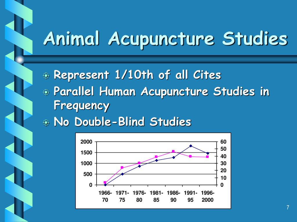 Animal Acupuncture Studies