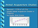 animal acupuncture studies