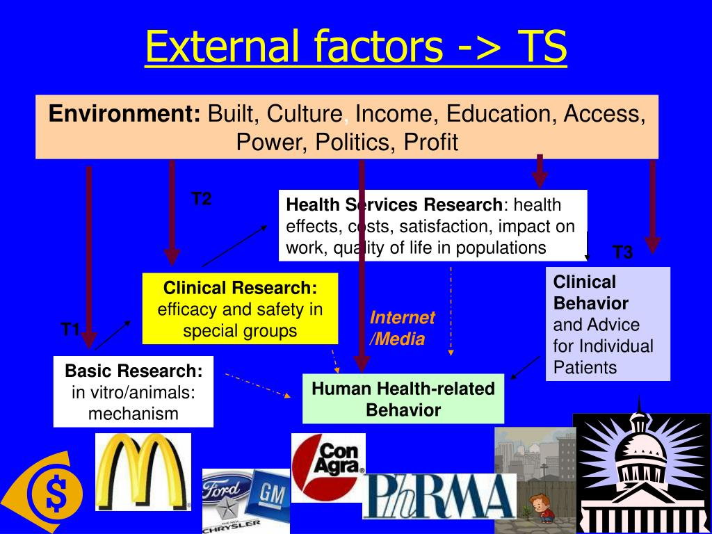 External factors -> TS