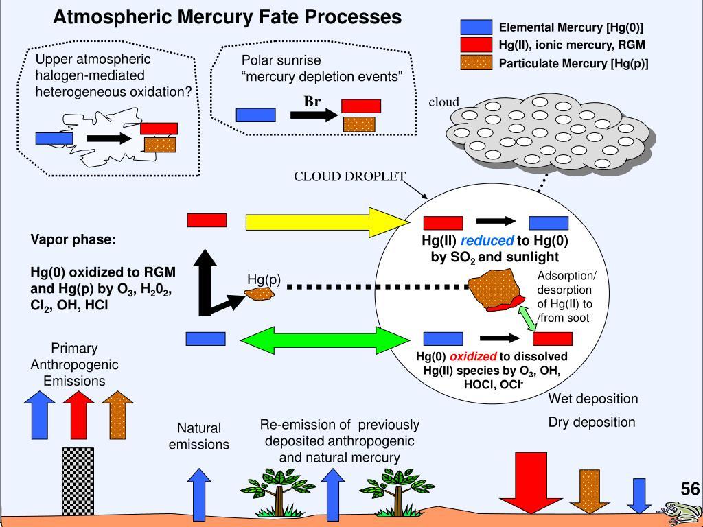 Elemental Mercury [Hg(0)]