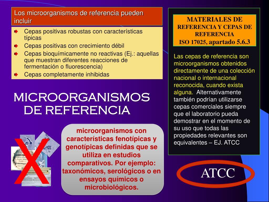 Los microorganismos de referencia pueden incluir