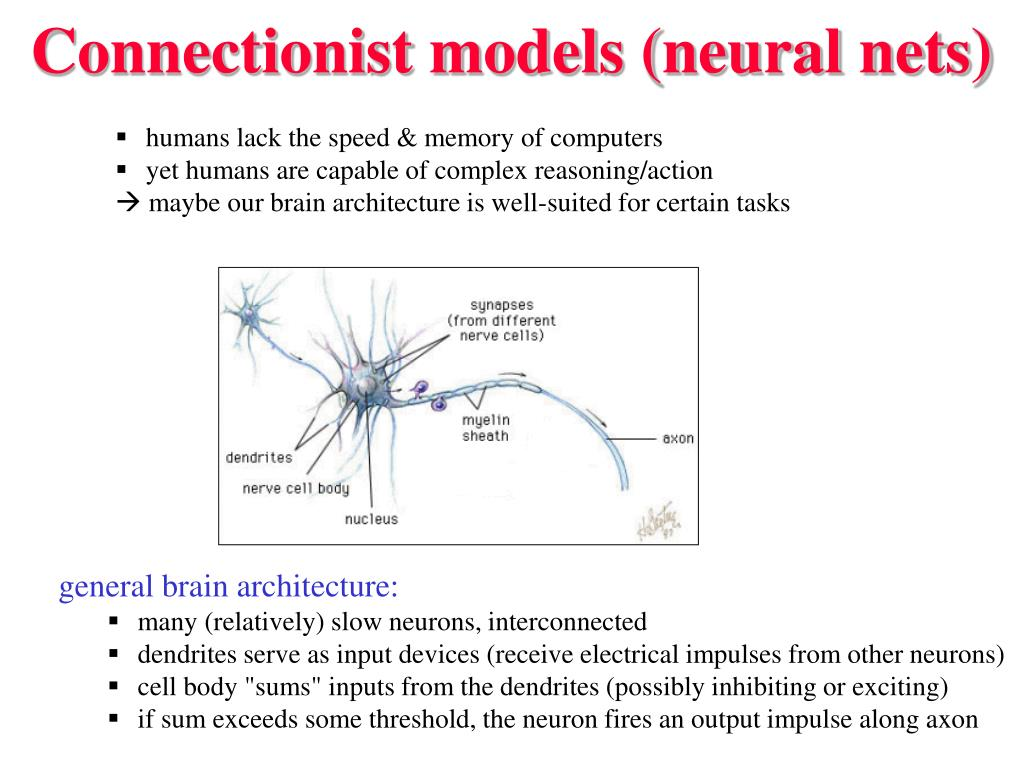Connectionist models (neural nets)