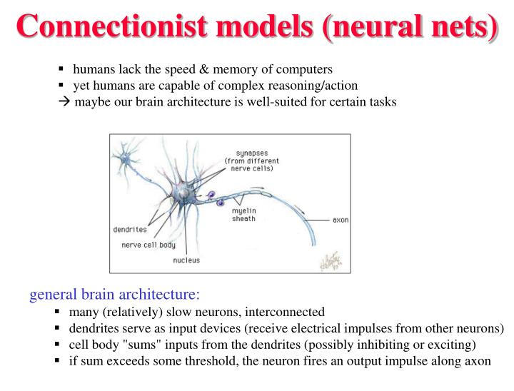 Connectionist models neural nets l.jpg