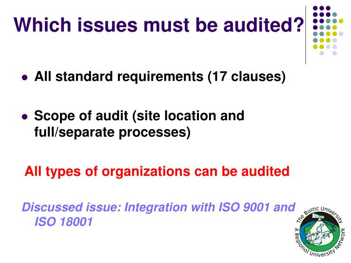 Which issues must be audited?