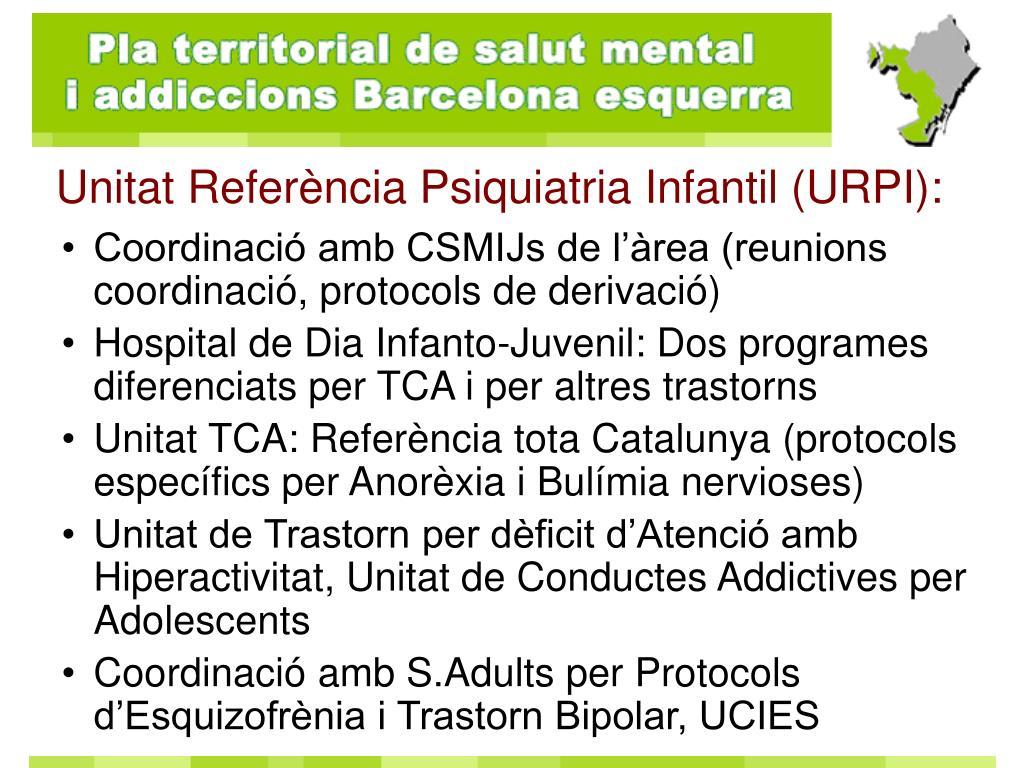 Coordinació amb CSMIJs de l'àrea (reunions coordinació, protocols de derivació)