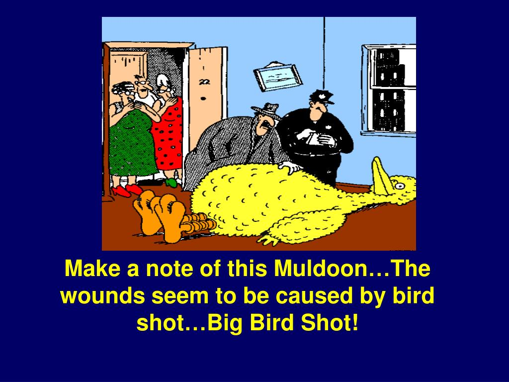 Make a note of this Muldoon…The wounds seem to be caused by bird shot…Big Bird Shot!