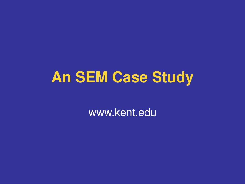 An SEM Case Study