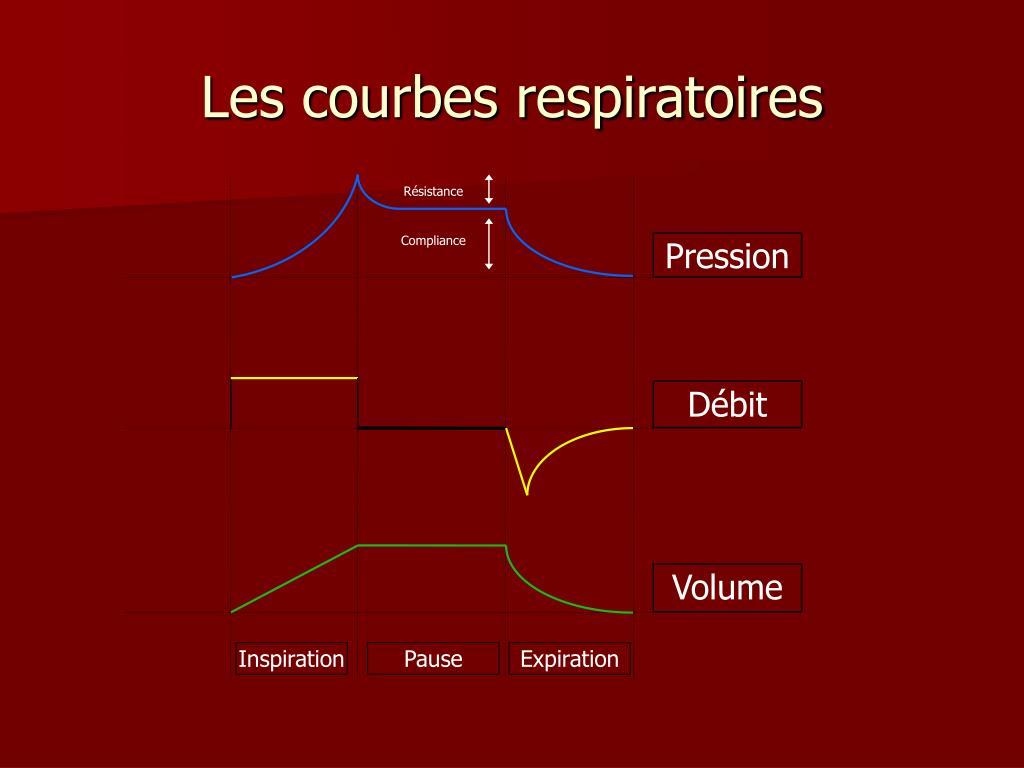 Les courbes respiratoires