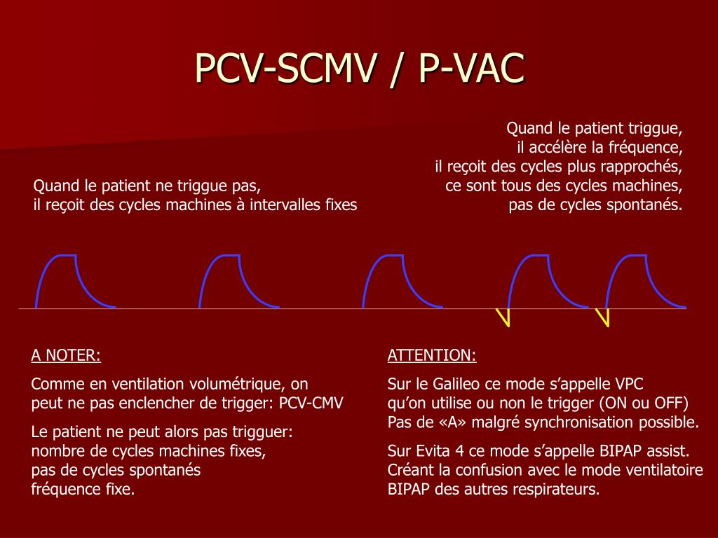PCV-SCMV / P-VAC