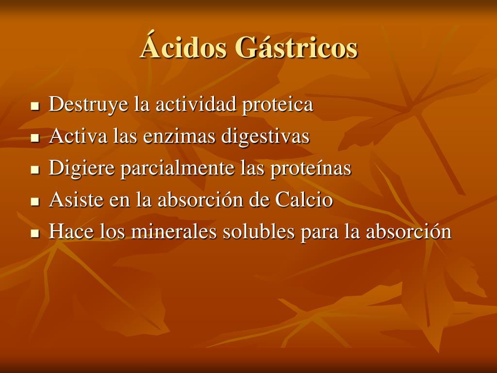 Ácidos Gástricos