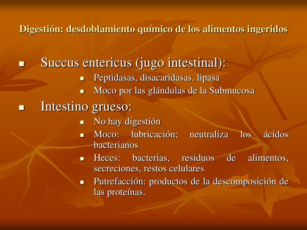 Digestión: desdoblamiento químico de los alimentos ingeridos