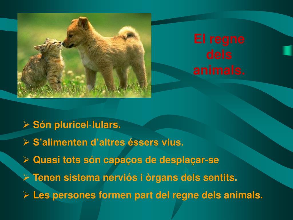 El regne dels animals.