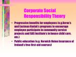 corporate social responsibility theory113