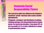 corporate social responsibility theory124