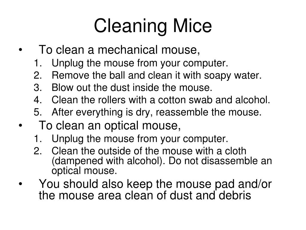 Cleaning Mice