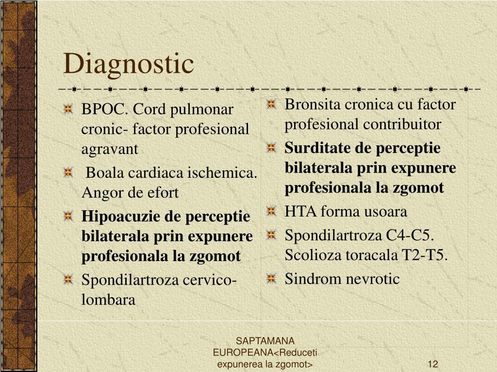 BPOC. Cord pulmonar cronic- factor profesional agravant